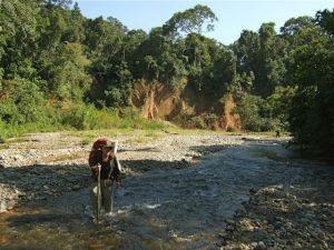 Tijdens de 15 daagse jungletocht in Bolivia