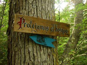 Bescherm het bos